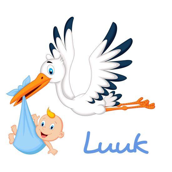 geboortesticker-jongen-geboorte-stikker-raamsticker-baby-550x550.jpg